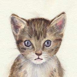 Mačička & akvarel