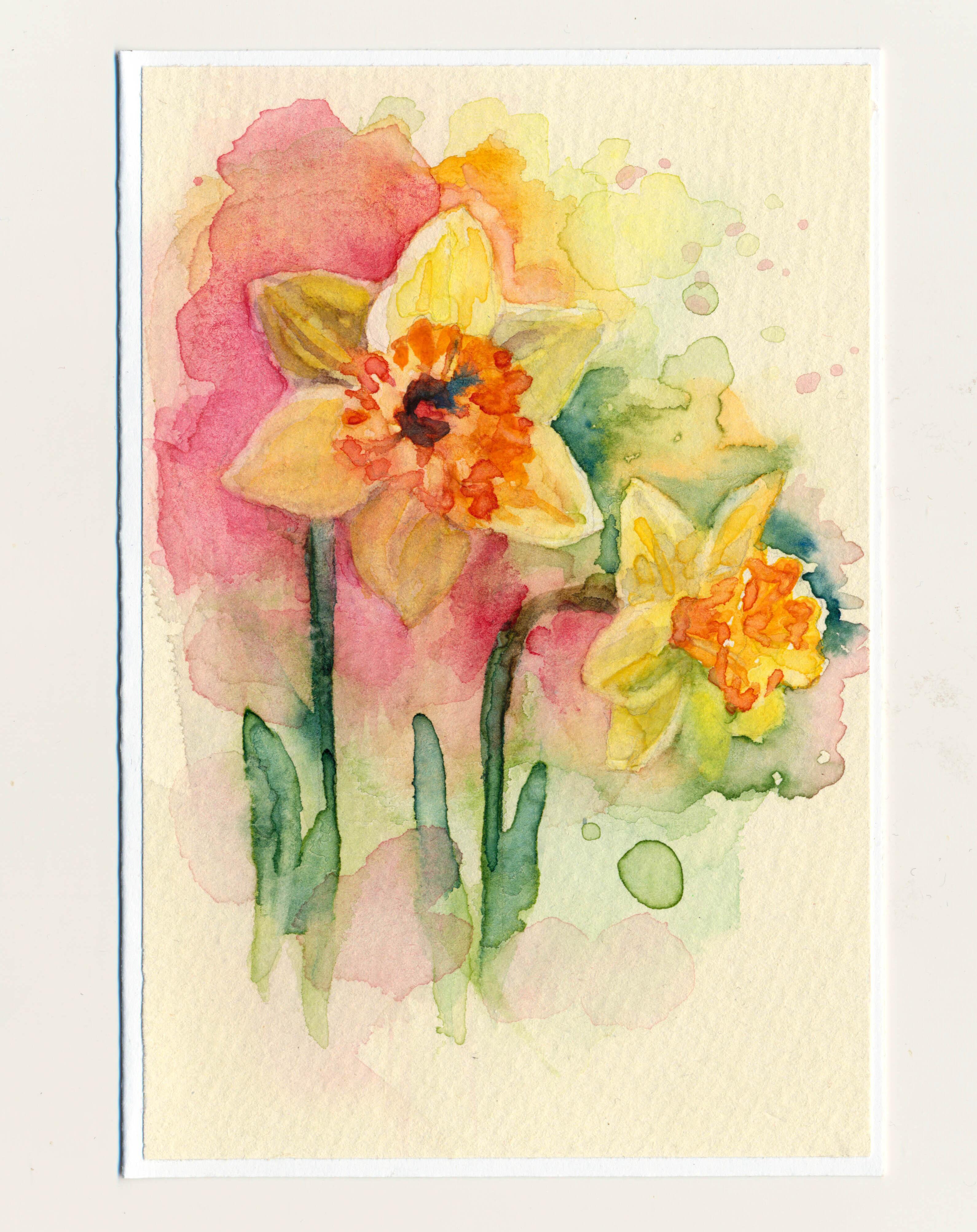 Ručne maľované pohľadnice – Narcisky