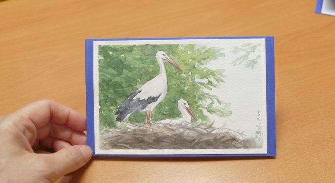 Pohľadnice s motívom Bociany